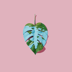Blue paint splatter over tropical leaf on pink pastel background. flat lay. Minimal concept.