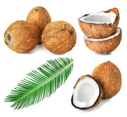 Set of coconut pieces and nuts on white background