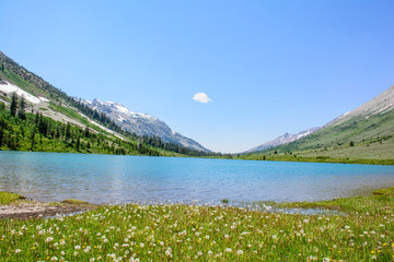 Glacier Mountain with Lake in the Summer with green