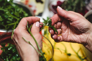 Horizontal photo of aged female hands with golden ring holding fresh green Arugula with vegetable table in background