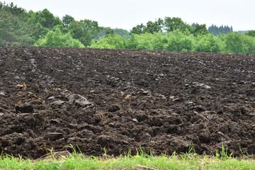 耕したばかりの黒土の畑