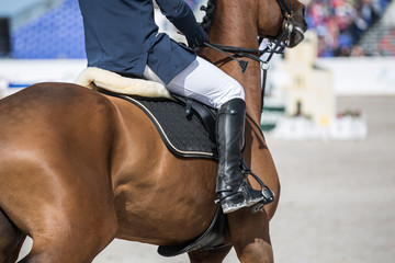 Horse Jumping, Equestrian Event