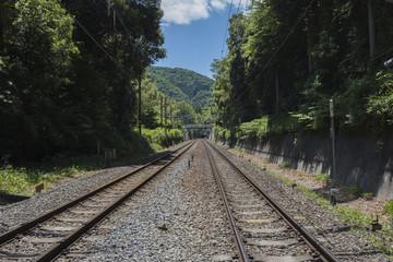 Fotobehang Spoorlijn Train Tracks