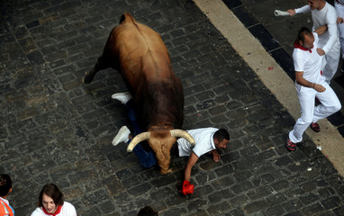 A runner is knocked down by a Puerto de San Lorenzo bull during the third running of the bulls at the San Fermin festival in Pamplona