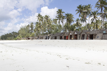 Dream beach in zanzibar