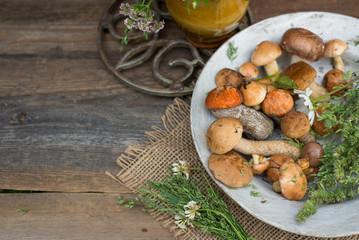 Fresh woodland fungi with boletus mushrooms