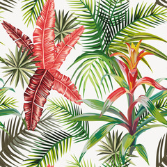 Pink palm leaves bromelia light background