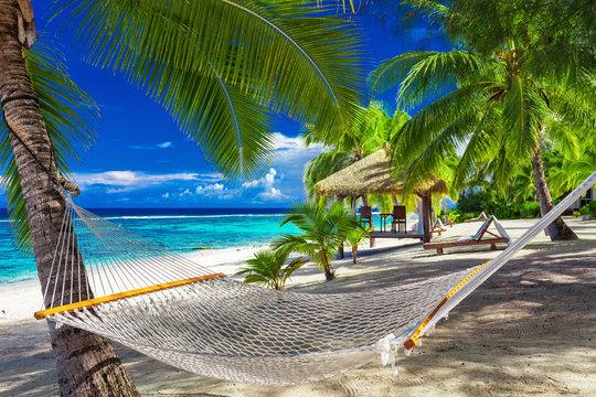 Hammock between palm trees on tropical beach of Rarotonga, Cook Islands, South Pacific
