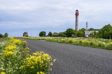 Blooming green grass and yellow flowers on the side of the road red lighthouse on the background Paldiski Estonia