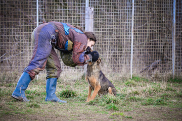 The trust and love of the dog and his lady  trainer in the training of obedience before socialization