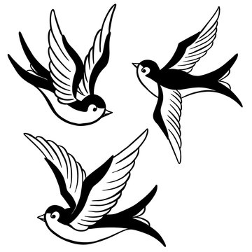 set of the swallow icons. Design elements for poster, t-shirt. Vector illustration.