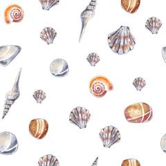 Sea shells pattern. Watercolor sketch style marine background