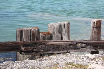 Wooden Posts / close Seven Mile Bridge, Little Duck Key, Florida Keys, USA