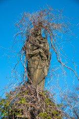 Creepy mystical  old  figure of Mary with little Jesus. Sculpture overgrown with ivy like braids.