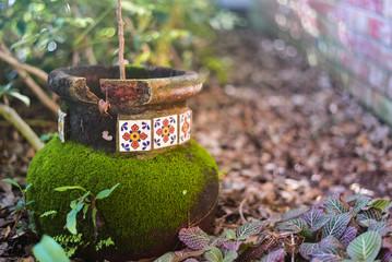 Sunny Garden Pottery