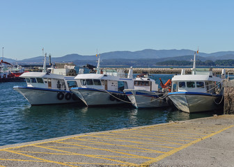 view of fishing boats in the port