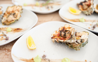 Oysters cooked on a grill lie on a white plate