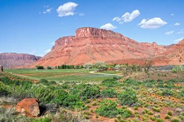 Fertile Farm Land Along Colorado River in Castle Valley