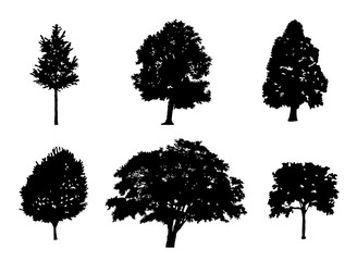 Tree collection set of black silhouette illustration. vector illustration eps