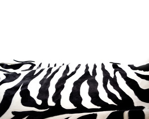 Zebra background, free space for design on a white background