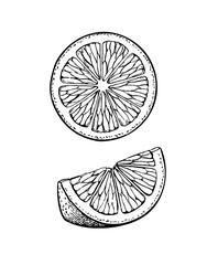 Vector illustration of lemon