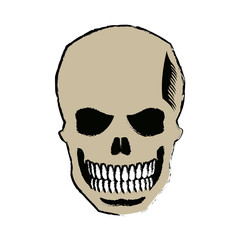 skull of pirate dead mystery symbol