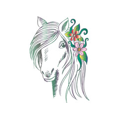Sketchy of head horse.