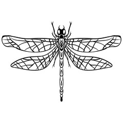 Hand drawn Sketch Dragonfly Vector tattoo