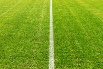 Mittellinie im Stadion