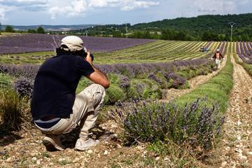 Photographier champ lavande