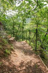 Wandern, Nationalpark Harz, Ilsenburg, Heinrich-Heine-Wanderweg