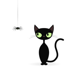 Black cat looking at a spider