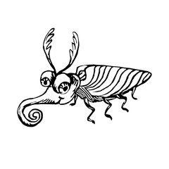 Funny stag beetle, hand drawn doodle black and white sketch in pop art style, vector illustration