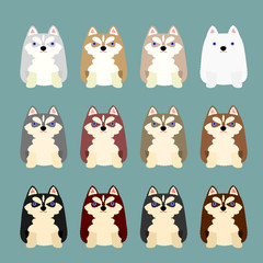 cute husky puppies coloring variations