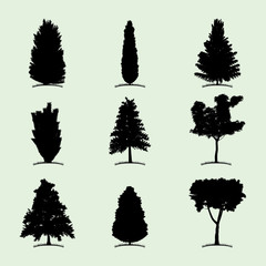 Tree Collection Flat Icon