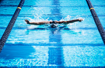 Swimmers doing butterfly stroke in lane