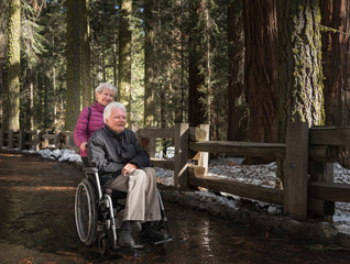 Senior woman pushing husband in wheelchair through forest at Sequoia National Park, California, USA