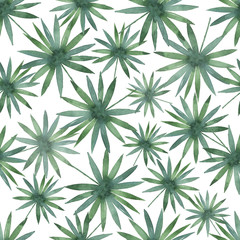 Watercolor seamless pattern with tropical leaves isolated on white background.