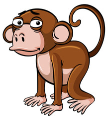 Brown monkey with sad face