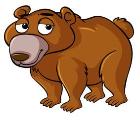 Grizzly bear with sleepy face