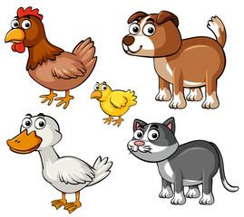 Different types of farm animals