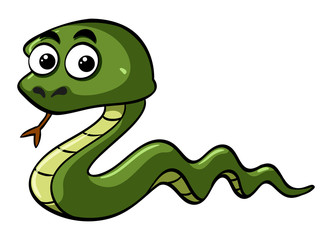 Green snake with wide eyes