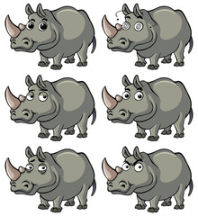 Hippo with different facial expressions