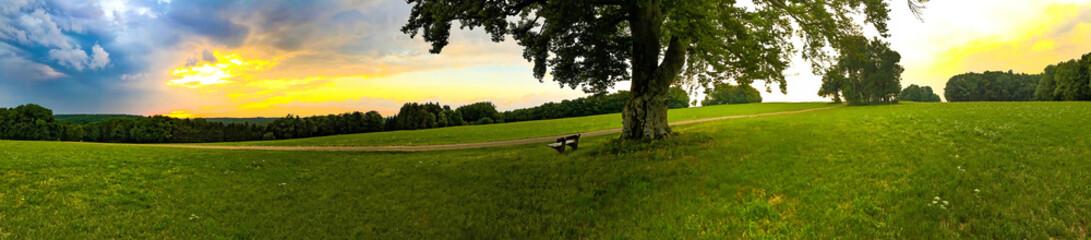 Schwäbische Alb bei Westerheim - Panoramaaufnahme