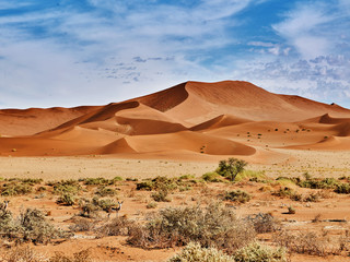 In de dag Droogte desert of namib with orange dunes