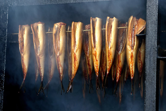 Fresh smoked fish in smoker grill
