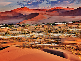 Photo sur Plexiglas Brique desert of namib with orange dunes