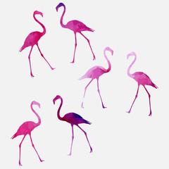 Tuinposter Flamingo Set of a flamingo