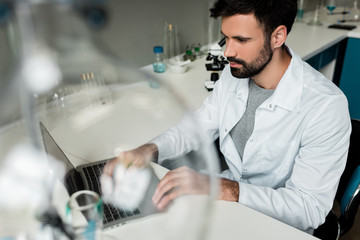 Serious bearded scientist using laptop in chemical laboratory