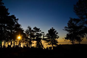 Phu Ruea National Park silhouette background